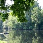 Rio Ave no Parque da Rabada em Sto.Tirso